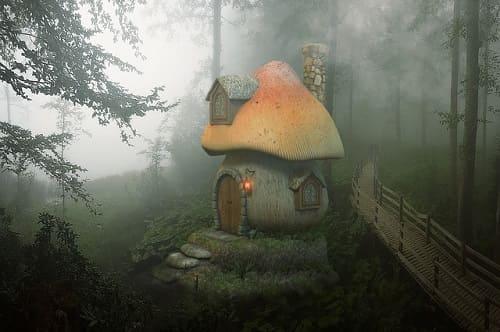 キノコの家