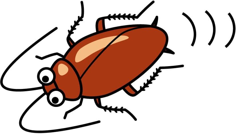 ゴキブリの絵